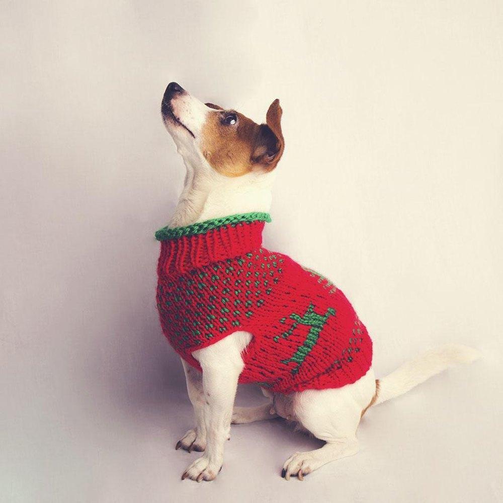 gestrickter hundepullover weihnachten